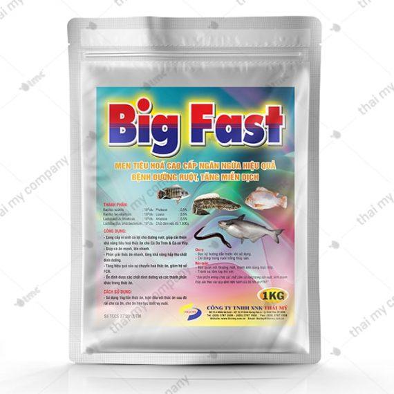 BIG FAST Men tiêu hoá cao cấp ngăn ngừa hiệu quả bệnh đường ruột, tăng miễn dịch